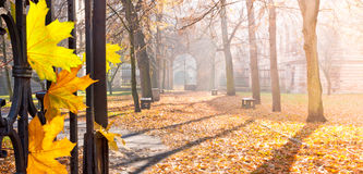 De herfst colonade met een gateway royalty-vrije stock foto