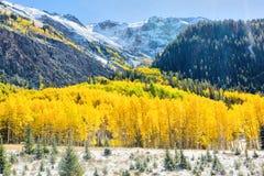 De herfst in Colorado Royalty-vrije Stock Afbeeldingen