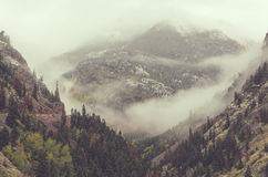 De herfst in Colorado Royalty-vrije Stock Fotografie