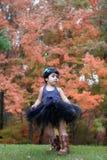 De herfst colors2 Stock Afbeeldingen