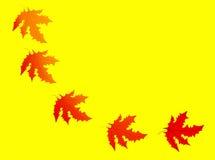 De herfst - dalend blad Royalty-vrije Stock Afbeeldingen