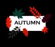 De Herfst dalende bladeren van de voorraad vectorillustratie Herfstgebladertedaling en populierblad die in het onduidelijke beeld stock illustratie