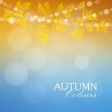 De herfst, dalingsachtergrond met esdoorn en eiken bladeren en lichten, Stock Afbeeldingen