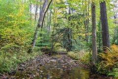 De herfst in de Allegheny-Bergen Royalty-vrije Stock Foto
