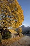 De herfst in de Alpen Royalty-vrije Stock Afbeelding