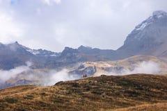 De herfst in de berg Royalty-vrije Stock Afbeelding