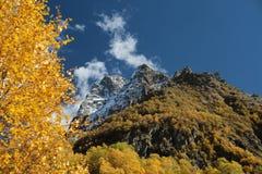 De herfst in de bergen Stock Fotografie