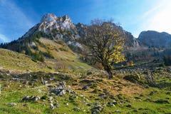 De herfst in de bergen van het Juragebergte Royalty-vrije Stock Afbeeldingen