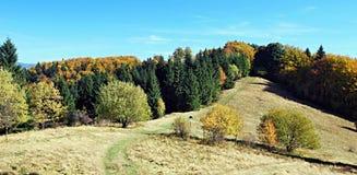 De herfst in de bergen van Moravskoslezske Beskydy Stock Foto