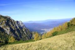 De herfst in de Karpaten Royalty-vrije Stock Fotografie