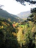 De herfst in de Pyreneeën Stock Foto's