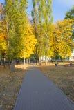 De herfst in de stad stock afbeeldingen