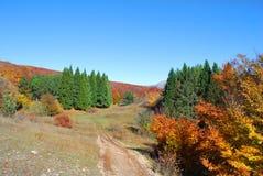 De herfst, de weg in de bergen Stock Foto