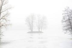 De herfst/de Winterachtergrond met bomen royalty-vrije stock afbeeldingen
