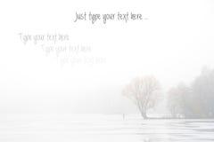 De herfst/de Winterachtergrond voor uw tekst stock afbeeldingen