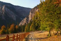 De herfst dichtbij canion Bicaz royalty-vrije stock fotografie