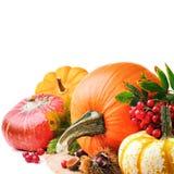 De herfst die met diverse pompoenen plaatsen Royalty-vrije Stock Afbeelding