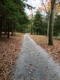 De herfst in Diepe Kreek, M.D. Stock Fotografie