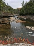 De herfst in Diepe Kreek, M.D. Stock Foto