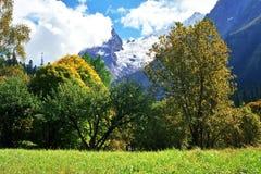 De herfst in Dombai. Royalty-vrije Stock Foto