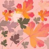 De herfst doorbladert stock illustratie