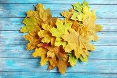 De herfst doorbladert Royalty-vrije Stock Afbeelding