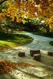 De herfst doorbladert in park BeituCheng Royalty-vrije Stock Fotografie