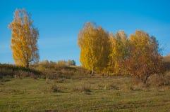 De herfst in dorp royalty-vrije stock fotografie