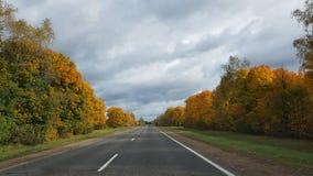 De herfst droevige weg stock foto's