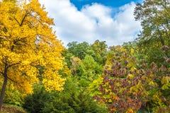 De herfst in een botanische tuin royalty-vrije stock afbeelding