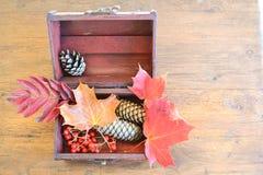 De herfst in een doos Royalty-vrije Stock Foto's