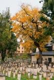 De herfst in een Joodse begraafplaats Stock Fotografie