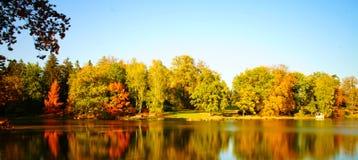 De herfst in een park stock foto