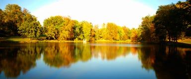 De herfst in een park stock foto's