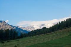De herfst in een vallei in Tirol Stock Afbeeldingen