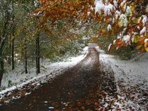 De herfst en de winter in de zelfde tijd op een weg Royalty-vrije Stock Fotografie