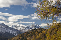 De herfst in Engadine Royalty-vrije Stock Fotografie