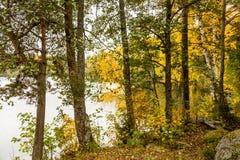 De herfst in Finland Stock Fotografie
