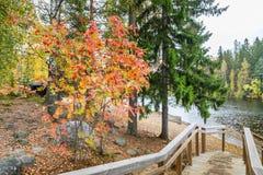 De herfst in Finland Stock Afbeelding