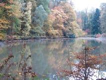 De herfst in Forest Surrounding een Meer met Eenden stock foto