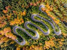 De herfst in Forest Winding Road Aerial View stock foto's