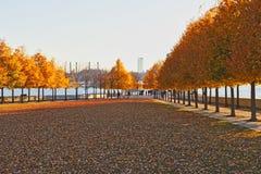 De herfst in Franklin D Roosevelt Four Freedoms ParkAutmn stock foto
