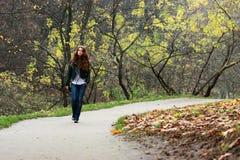 De herfst gaat Stock Fotografie