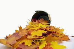 De herfst gekleurde bladeren liggen voor een kleine emmer stock fotografie