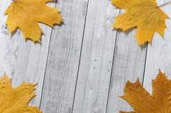 De herfst gele bladeren op lichte houten achtergrond royalty-vrije stock afbeelding