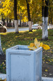 De herfst gele die bladeren, in het afval, op de achtergrond worden geworpen Stock Foto's