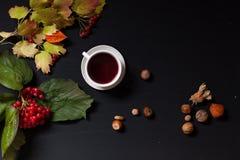 De herfst gele en Rode bladeren van de zwarte notenkop thee stock foto's