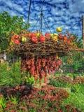 De herfst in Georgië Royalty-vrije Stock Afbeelding