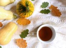 De herfst gestileerde foto Vrouwelijke Halloween-Desktopscène Kop thee, gele en oranje pompoenen en kleurrijke de herfstbladeren  stock foto's