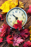De herfst gevallen bladeren Stock Foto's